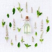 Un flacon d'huile essentielle couché au milieu de plantes vertes