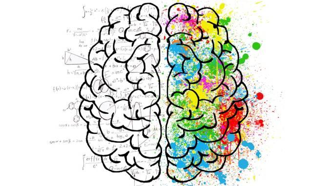 Dessin d'un cerveau avec équations et couleurs. Les couleurs sont dans la partie droite du cerveau, les équations dans la partie gauche.