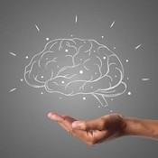 Cerveau dessiné au dessus d'une main.