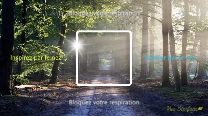 Exercice de respiration carrée : carré blanc dans une forêt incitant à la détente et à la relaxation.