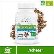 Harpagophytum bio : boite de compléments alimentaires (gélules) de la marque française Dynveo. Fond blanc avec la plante en arrière plan, derrière la boite. La mention acheter est sur fond vert, en bas de l'image.