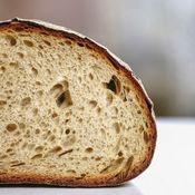 Morceau de pain aux céréales Kernza