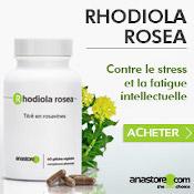Rhodiola Rosea : boîte, gélules et plante présentées sur fond gris.