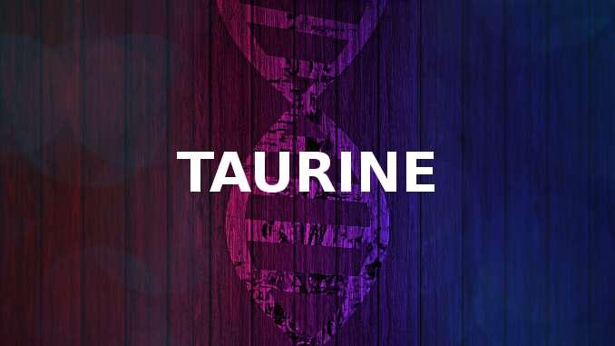 Mot Taurine écrit sur un fond coloré à dominance de violet. Chaîne acide aminé représentée en arrière plan.